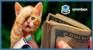 Виды аккаунтов instagram и их монетизация