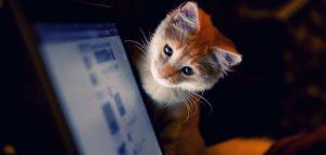 Как работает умная лента ВКонтакте и интеллектуальный алгоритм поиска контента Прометей?